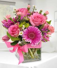 Delightful in Pink -Danvers, MA