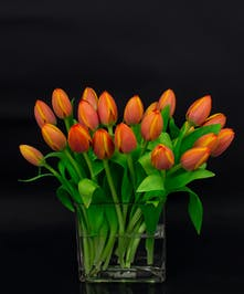 Our Autumn tulip vase is a collection of imported tulips in a simple glass