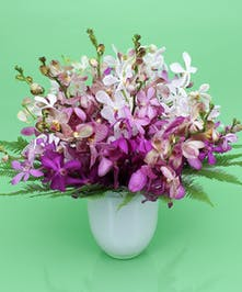 Bountiful Orchid Vase - Same-day Delivery to Danvers, MA - Currans Flowers