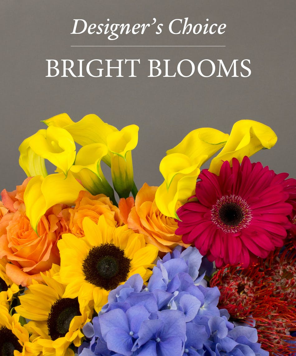 Bright Blooms Designers Choice - Currans Flowers - Danvers & Beverly, MA