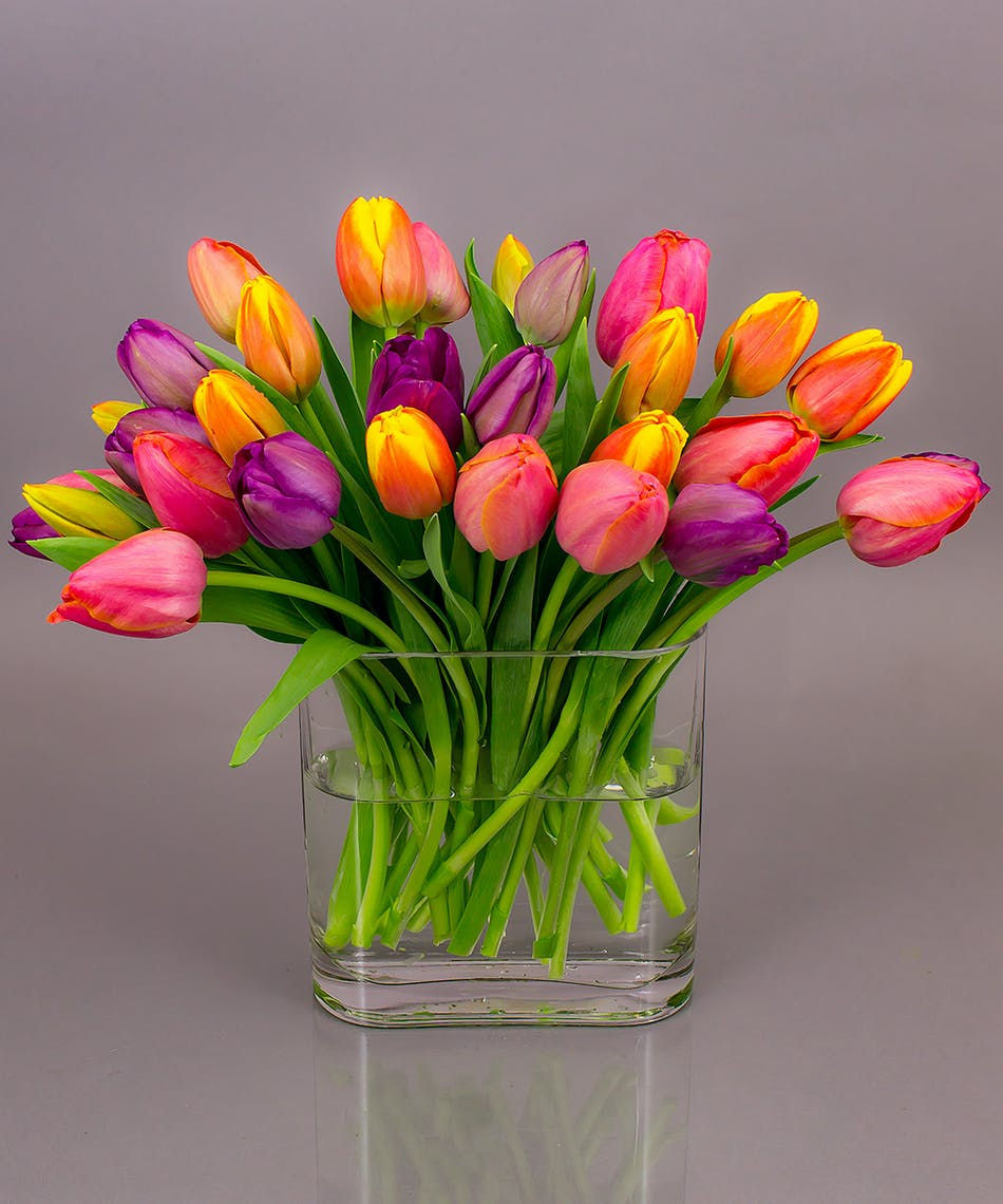 Get well flowers gifts danvers ma same day delivery currans currans grown tulip vase negle Gallery