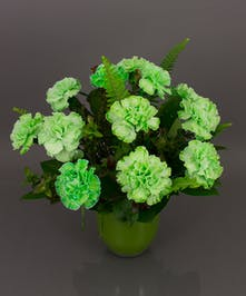 St. Patrick's Day Carnations  - Same Day Delivery Danvers, MA