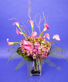 Hydrangea & Calla Lilies - Danvers & Beverly, MA