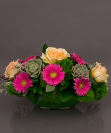 Arrive in style with our Marseille arrangement. Designed with Gerbera daisies, succulents and roses in our imported european