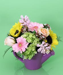 Purple Watering Can Arrangement - Same Day Delivery, Danvers MA