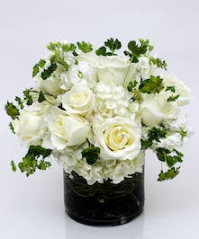 Prominence - White Roses & Hydrangea - Danvers (MA) Delivery