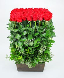 Rose Hedge Arrangement - Same day delivery to Danvers & Beverly, MA