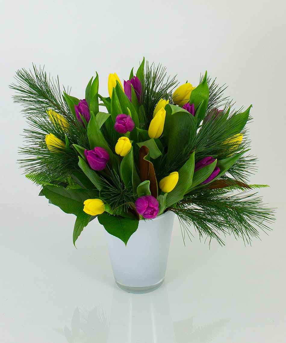 We will mix our freshest tulips in our imported Conner vase and combine them with some winter greens for this colorful arrangement.