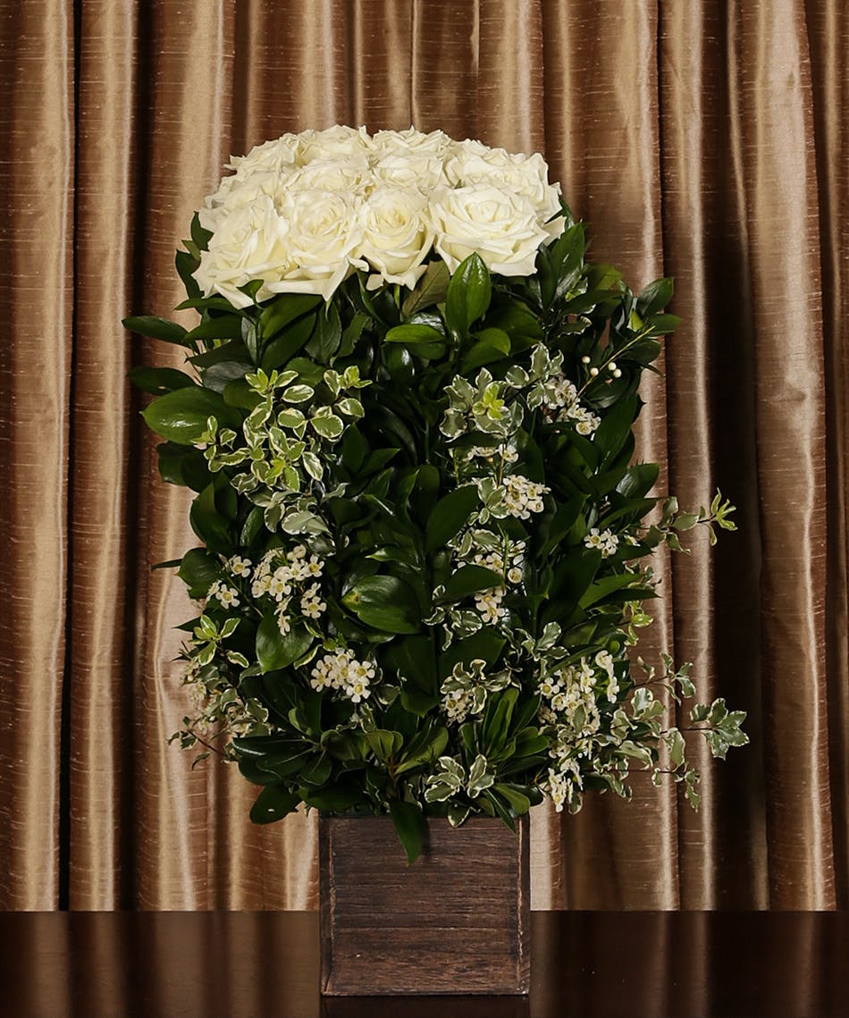 White Rose Hedge - Same-day delivery Danvers (MA) Currans Flowers
