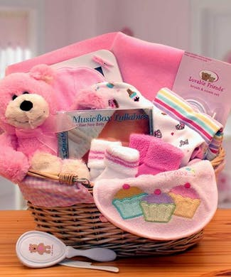Simply The Baby Basics New Baby Gift Basket -Pink