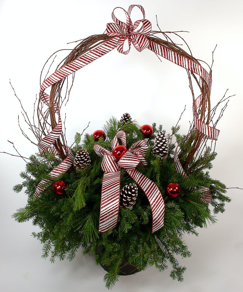 Candy Cane Arch Planter Danvers Ma Same Day Holiday Flowers Gifts Currans