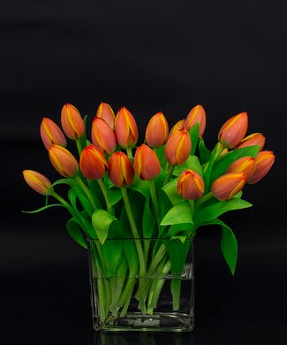 Autumn Tulip Vase