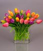 30 Tulips - Our most popular size!