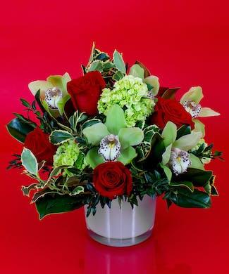 Holly & Roses