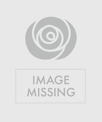 Sunshine Vase