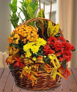 Fall Blooming Garden Basket
